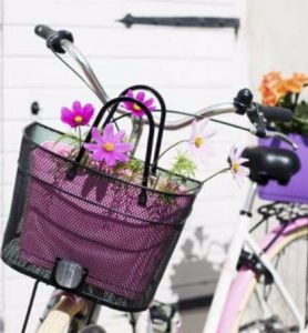 hinza bag bicycle